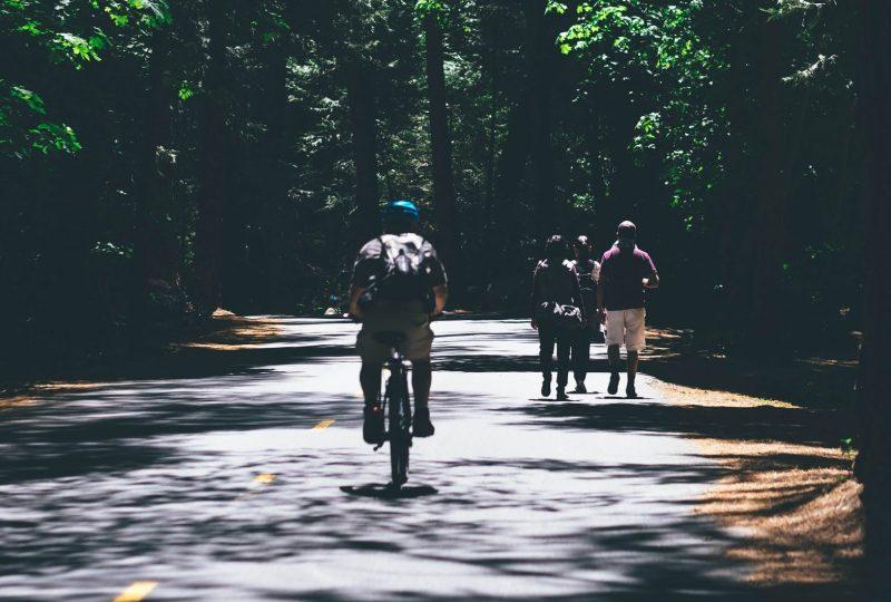 cycling vs walking